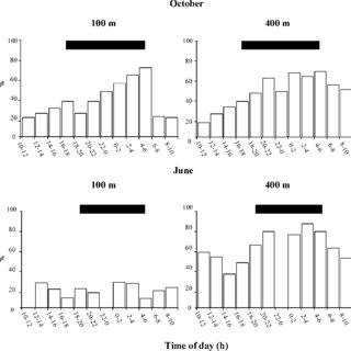 (PDF) Feeding activity rhythm of Northwestern