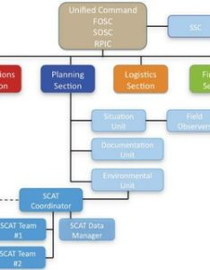 The unified command structure of incident system scat program is placed in also rh researchgate