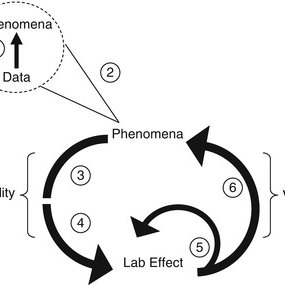 (PDF) Experimentation in Cognitive Neuroscience and