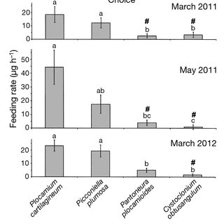 (PDF) Tolerance and sequestration of macroalgal chemical