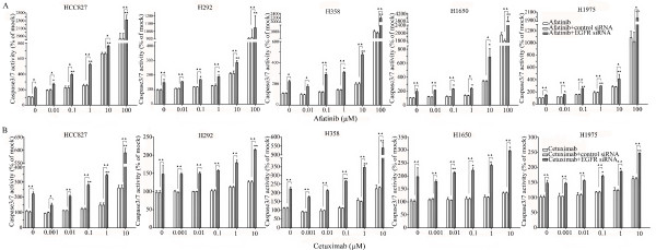Enhancement of apoptosis induction by the combination of