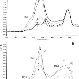 (PDF) Photo, thermal and natural ageing of ethylene
