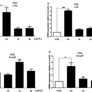Effect of PDE on MMP-1 production, MMPs mRNA expression