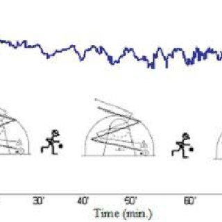 (PDF) Long Term Effects of Different Training Modalities