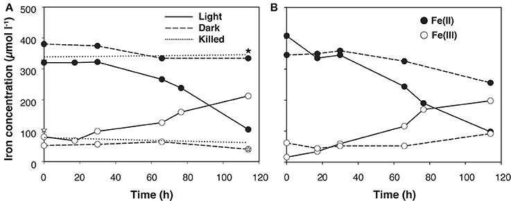 Light-dependent iron-oxidation by the natural microbiota