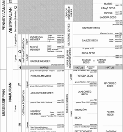 lithostratigraphic table of the czech and polish parts of the upper silesian coal basin sivek [ 850 x 1209 Pixel ]