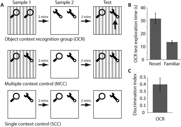 Behavioral measures of novel object-context recognition