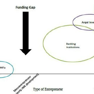 (PDF) Does Microfinance Fill the Funding Gap for