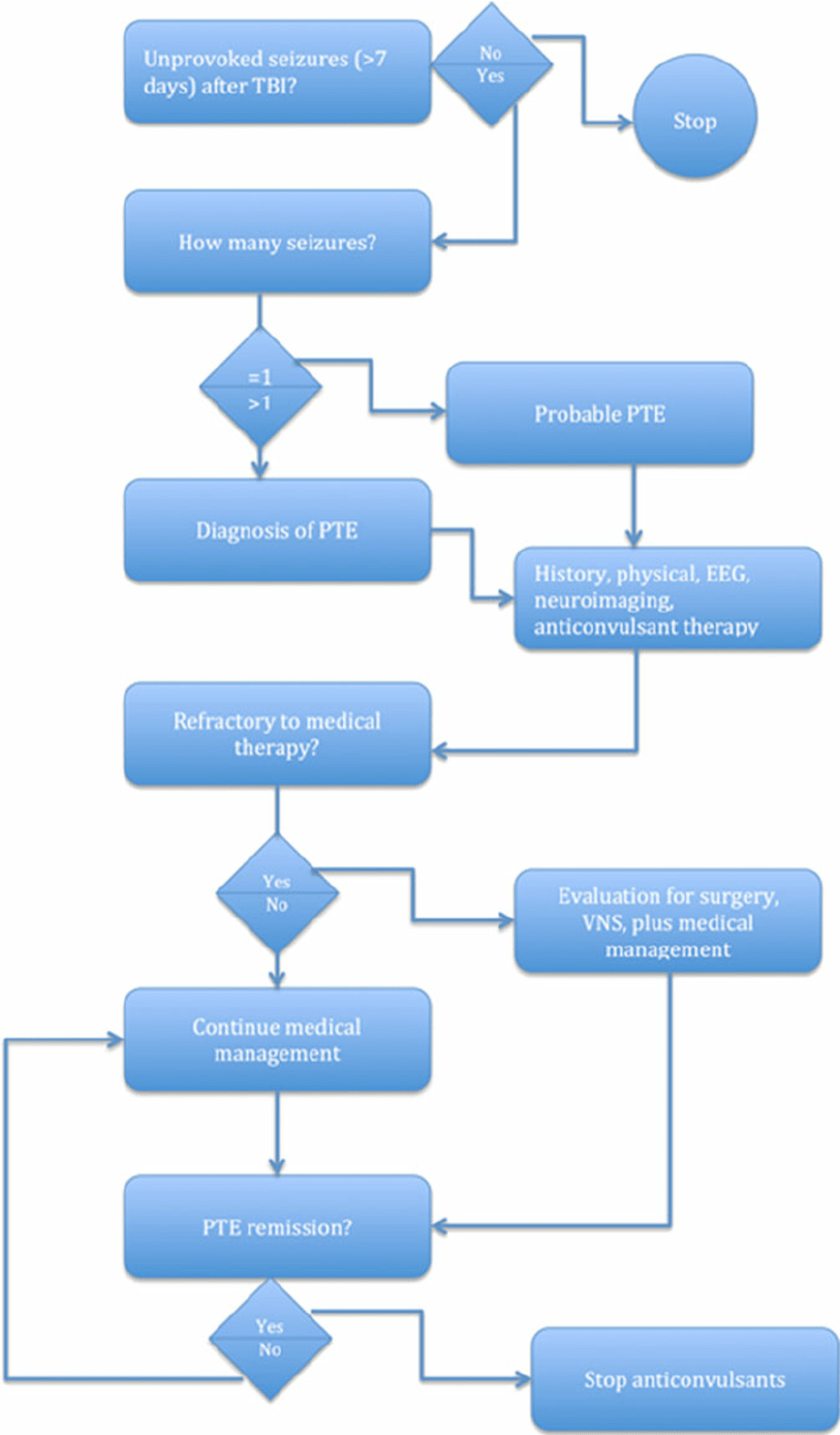 hight resolution of algorithm for post traumatic epilepsy pte diagnosis and treatment download scientific diagram