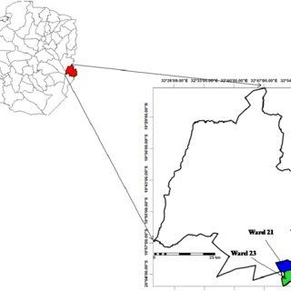 (PDF) Plant-parasitic nematodes associated with banana