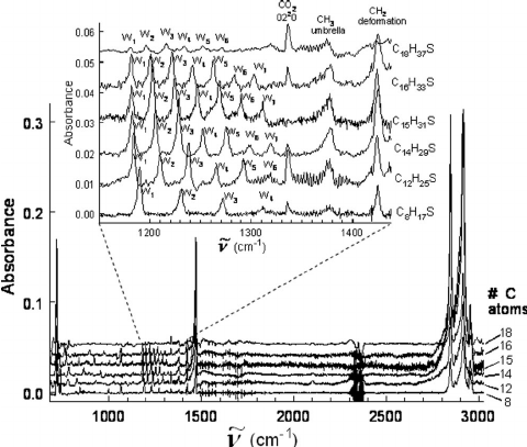 IR absorption spectra of a sequence of alkanethiol SAMs on