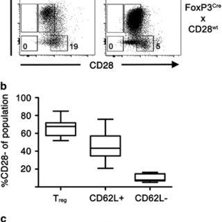 (PDF) Promiscuous Foxp3-cre activity reveals a