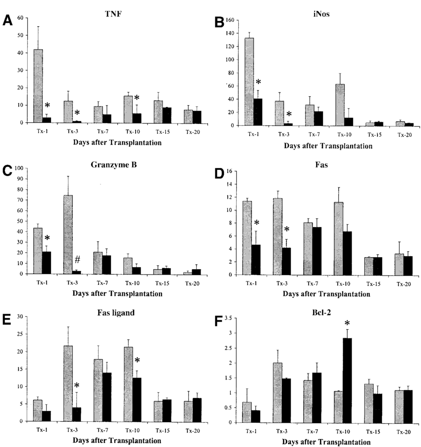 Effects of donor treatment with CO on the pro-inflammatory