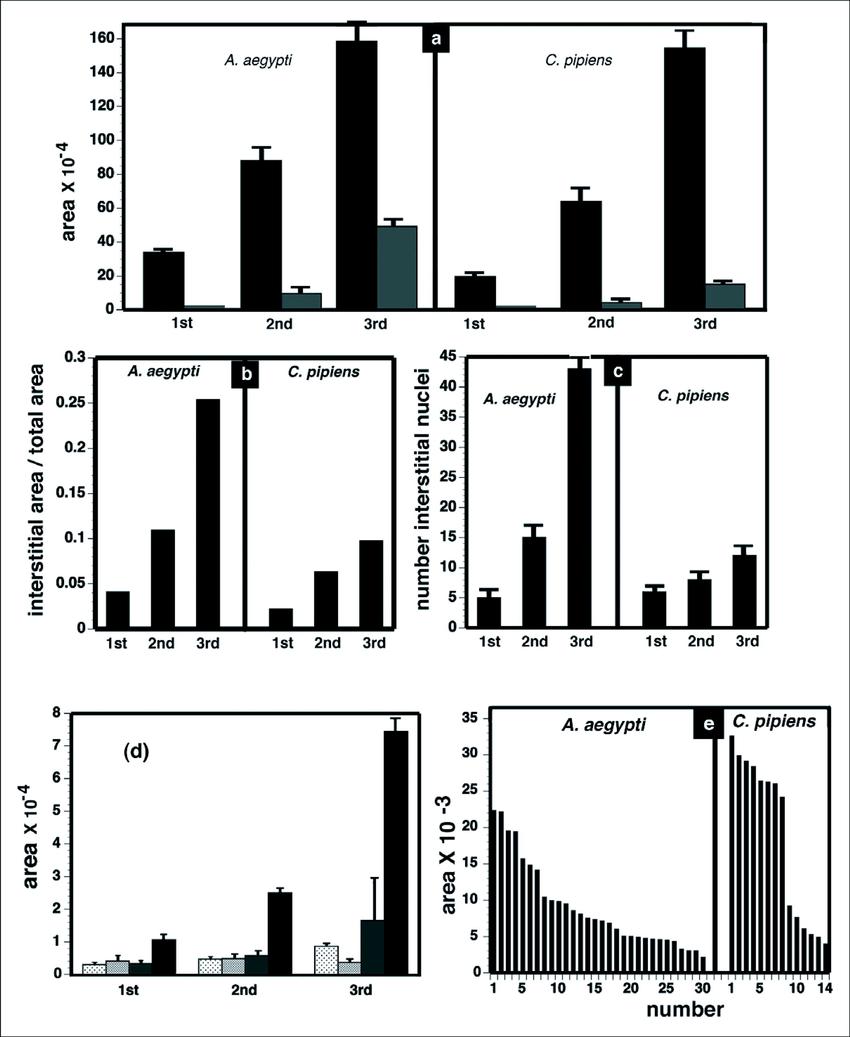 Measurements of Aedes aegypti and Culex pipiens midgut