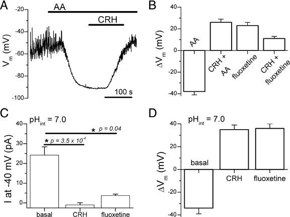 Effects of CRH and intracellular acidification on membrane