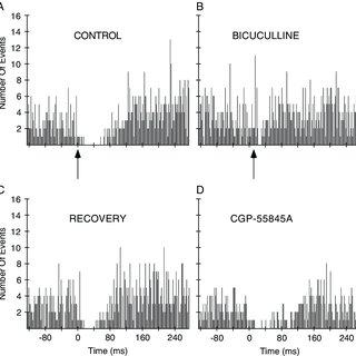 (PDF) GABAergic control of substantia nigra dopaminergic