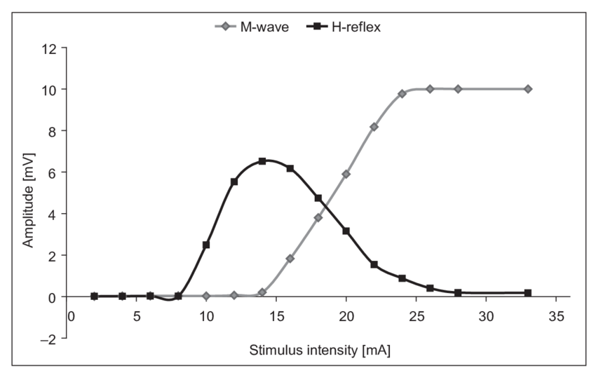 Recruitment curves of the H-reflex and M responses