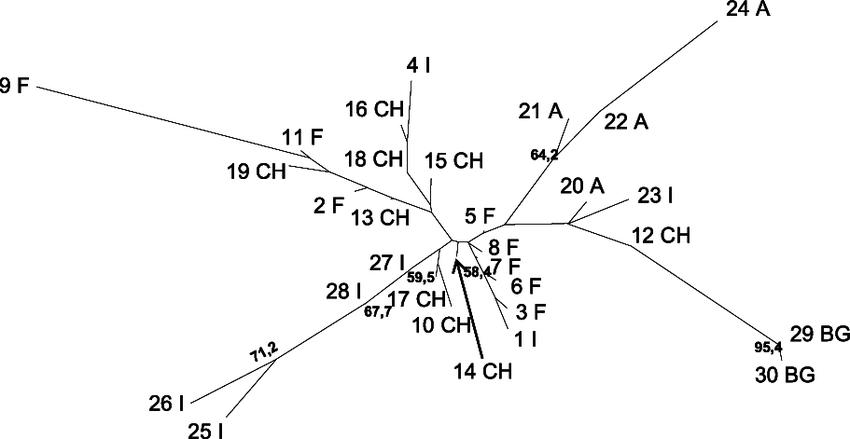 Neighbor-joining phenogram based on Nei's (1972) genetic