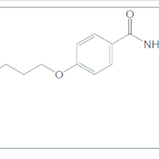 (PDF) The Synergistic Enhancing-Memory Effect of Donepezil