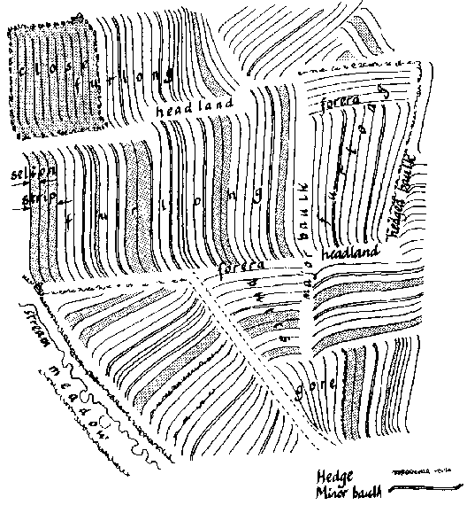 Typical Open-‐field system (Source: Oliver Rackham, 1996