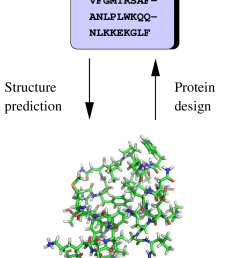 1 protein structure prediction and protein design  [ 850 x 1395 Pixel ]
