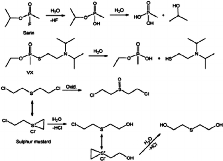 Catalytic degradation mechanism (hydrolysis and oxidative