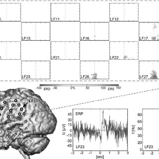 (PDF) Toward a Direct Brain Interface Based on Human
