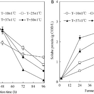 Effect of temperature on (A) the concentration and (B