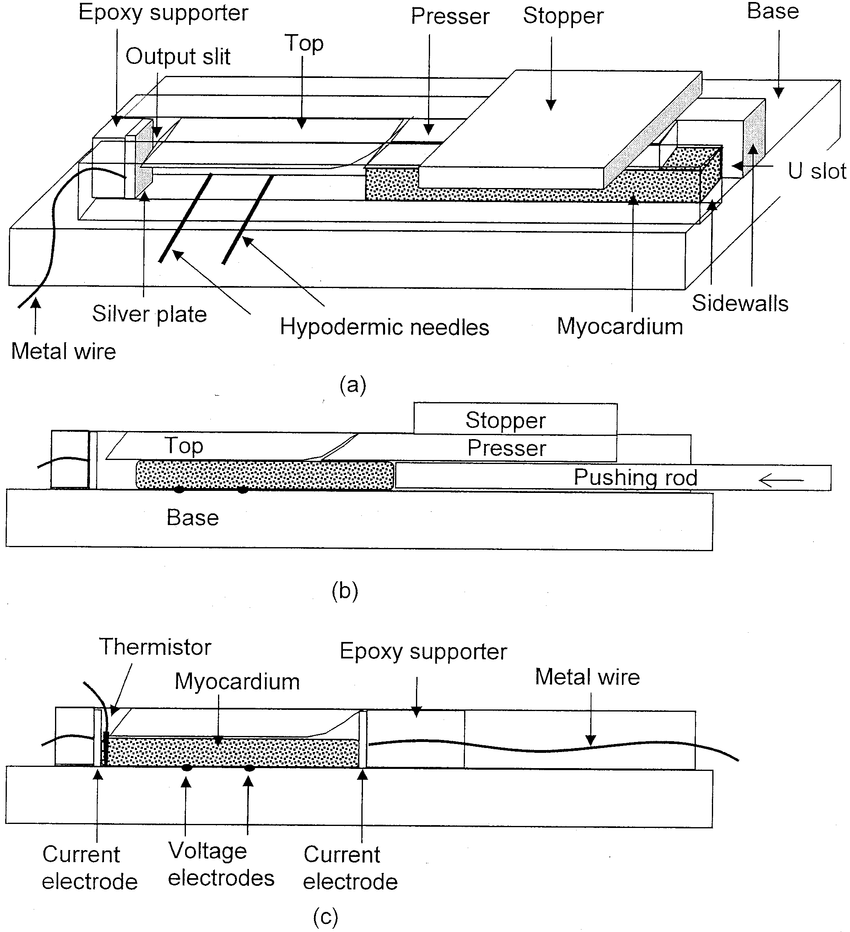 hight resolution of the miniature rectangular tube for measuring myocardial impedivity anisotropy the top piece the base