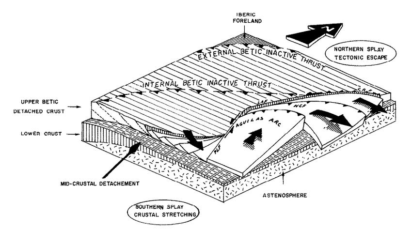 Schematic block diagram by Silva et al. (1993):