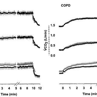 (PDF) Effect of hyperoxia on gas exchange and lactate