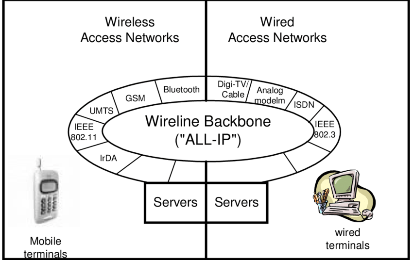 Wireless and Wireline Access Networks and the Global