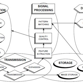 (PDF) Biometric System Vulnerability as a Compromising