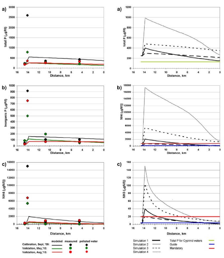 medium resolution of qual2k simulations of total p nh 4 n and nh 3 n