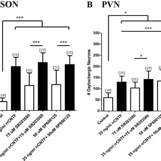 (PDF) The MAPK and PI3K pathways mediate CNTF-induced