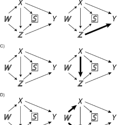 causal directed acyclic graphs dags showing possible causal structures that can lead to an [ 656 x 1371 Pixel ]