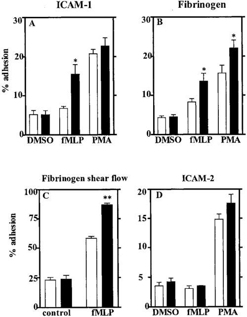 small resolution of lsp1 is a negative regulator of neutrophil adhesion to icam 1 and fibrinogen but