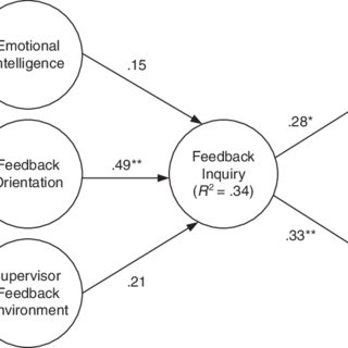 (PDF) Correlates and Consequences of Feedback Orientation