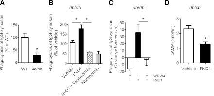Resolvin D1 rescues diabetic defects in macrophage