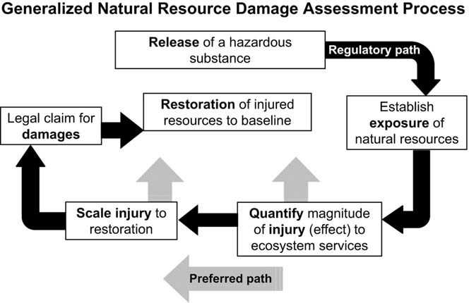General flowchart of natural resource damage-assessment