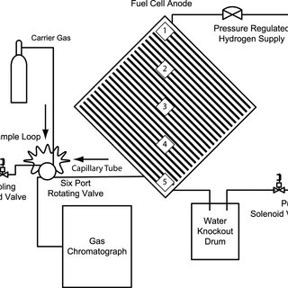 (Color online) Schematic of fuel cell systems with anode