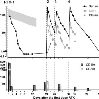 (PDF) Pharmacokinetics of rituximab in a pediatric patient