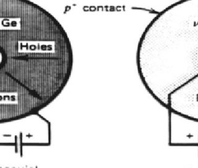 The Hpge Material May Be Either High Purity P