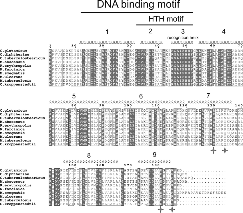 Sequence alignment of AcnR homologues. The conserved