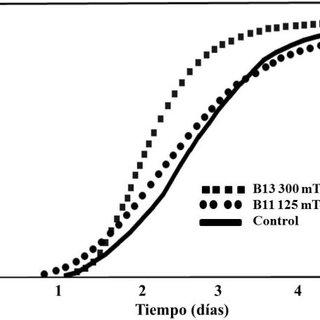 (PDF) Efecto del campo magnético estático homogéneo en la