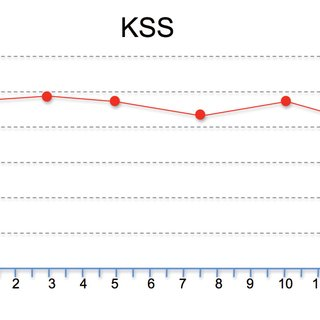 Escala de valoración funcional de rodilla. Knee Society
