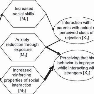 (PDF) Functional analysis in behavior therapy: Behavioral