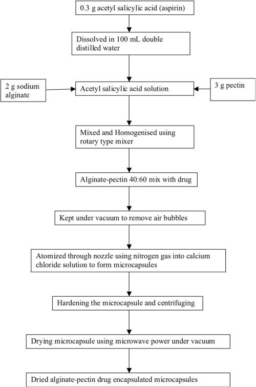 small resolution of process flow diagram of alginate pectin microcapsule preparation