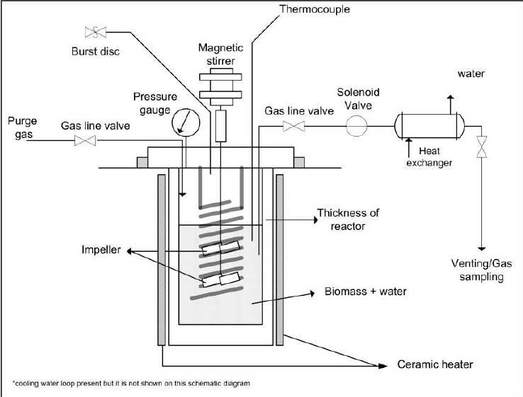 Schematic diagram of autoclave reactor for hydrolysis of