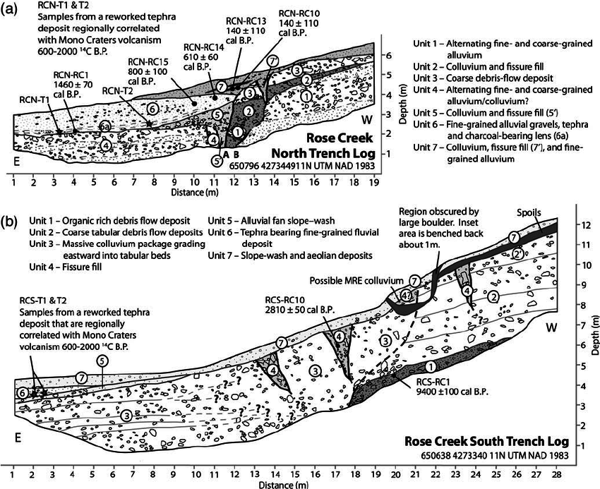 Sketch logs of the (a) north and (b) south trench